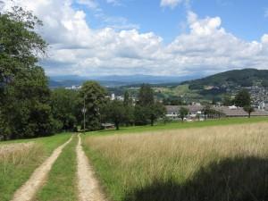 Hills again