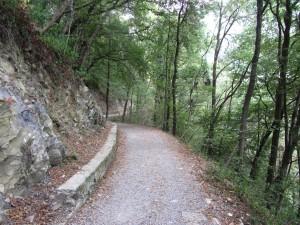 Easy path