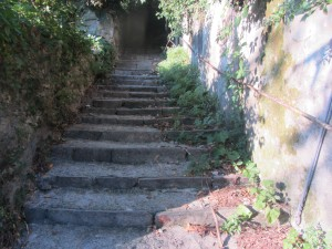The way to Brunate was paved with steps