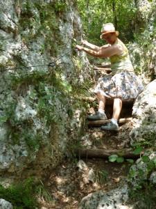 Janet descending