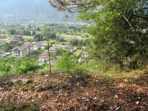 Site of a landslide